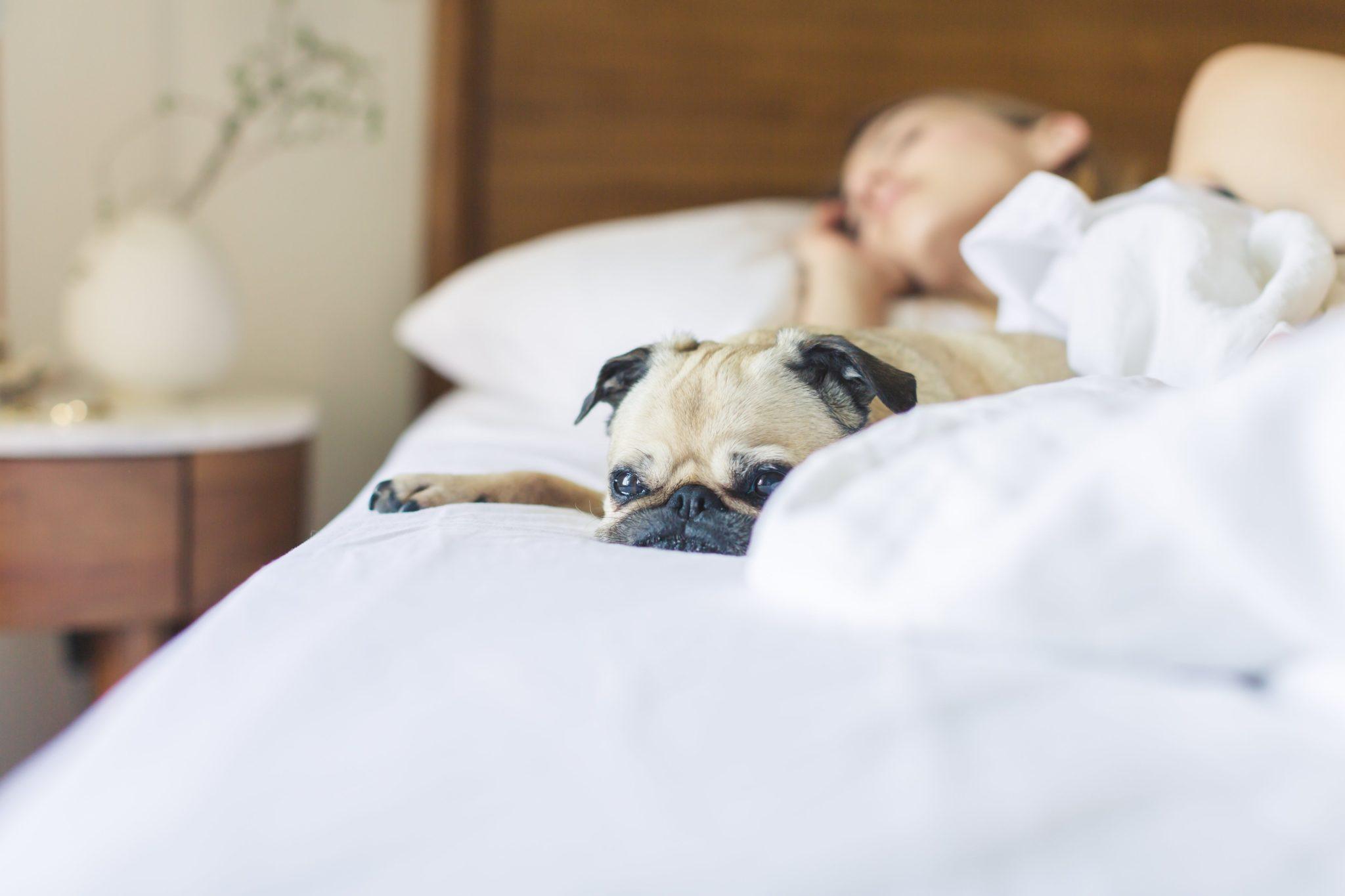 Meditación guiada para dormir